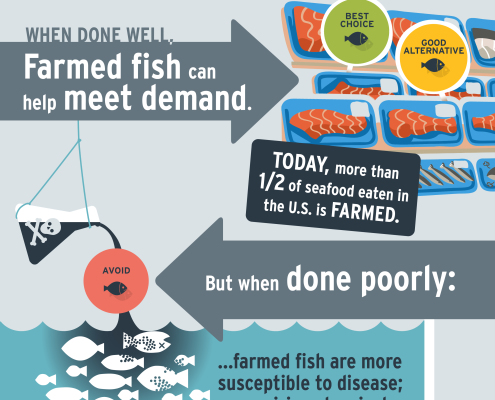Infodesign that communicates sustainable seafood choices