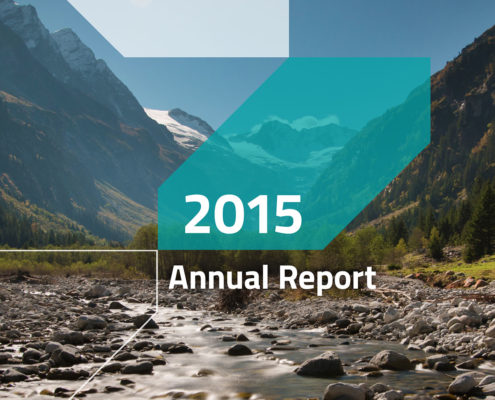EEB Annual Report - 2015